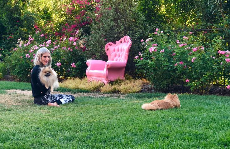 Jeffree Star's Dogs: 10 Adorable Things You Should Know
